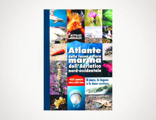 Pubblicato l'Atlante della flora e della fauna marina dell'Adriatico nord occidentale