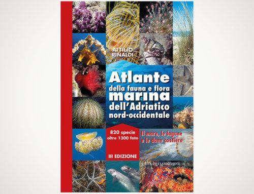 """Attilio Rinaldi – """"Atlante della fauna e flora marina dell'Adriatico nord-occidentale"""" – Editrice La Mandragora – 2017"""
